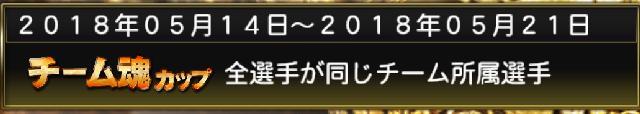 チャレンジ・チーム魂